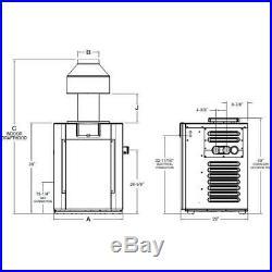 Raypak 009217 Digital 266,000 BTU, Natural Gas, Pool Heater P-R266A-EN-C